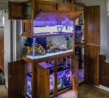Oak aquarium stand with upper cabinets for lighting, and side cabinets for pump housing
