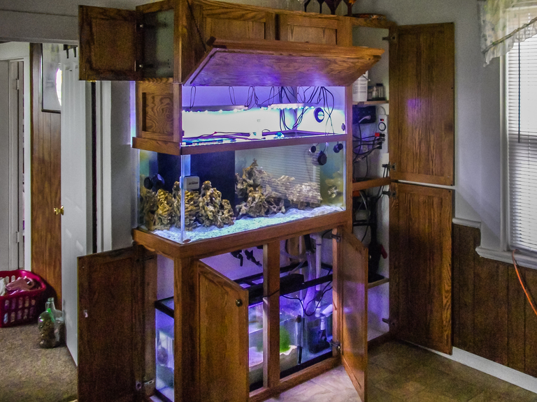 Attirant Oak Aquarium Stand With Upper Cabinets For Lighting, And Side Cabinets For  Pump Housing
